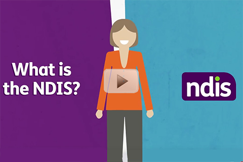 What is the NDIS Video